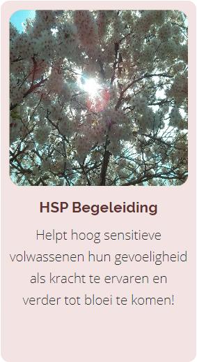 HSP Begeleiding, Coaching HSP
